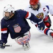 Para ledus hokejs attēls